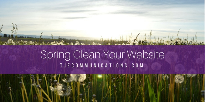 Spring Cleaning Website